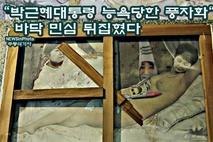 """""""박근혜대통령 나체 ,능욕당한 풍자화""""로 바닥 민심 뒤집혔다."""
